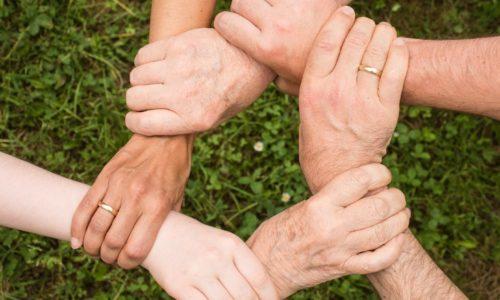 Sociocratie : Que signifie ce terme ?